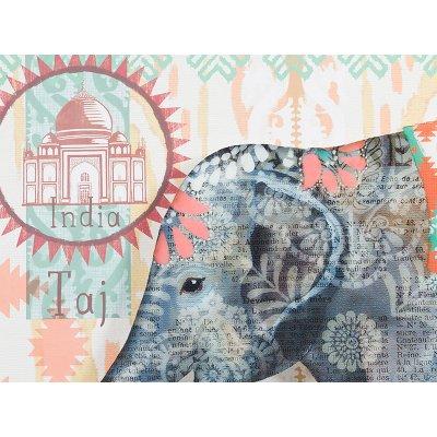 Cuadro plexiglass elefante - Imagen 1