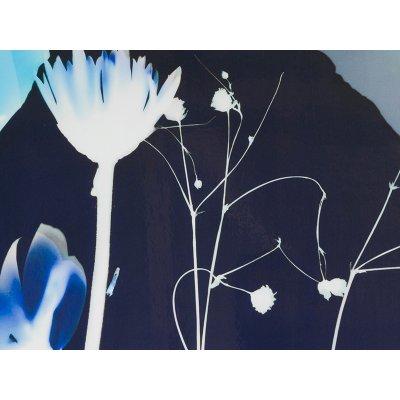 Cuadro flores - Imagen 2