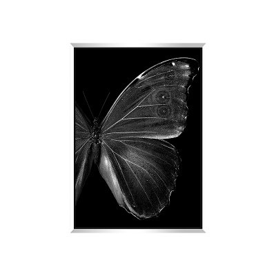 Cuadro mariposas - Imagen 1