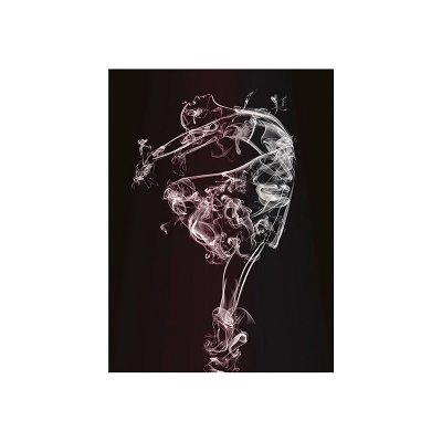 Cuadro bailarina - Imagen 1