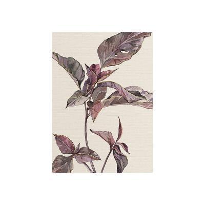Cuadro planta gris - Imagen 1