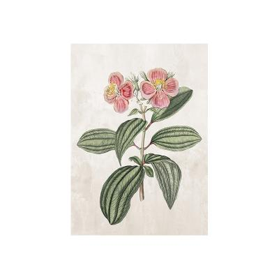 Cuadro dibujo flores - Imagen 1
