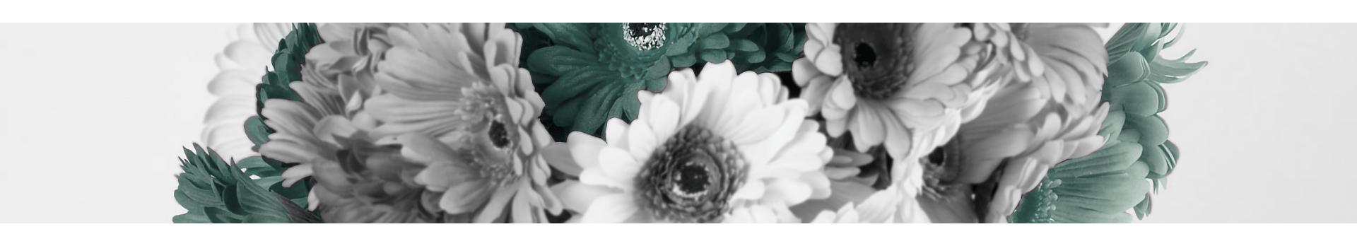 Flores para el Hogar | Decoración | Mobelfy ®
